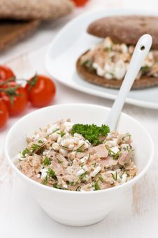 Free Pate With Tuna, Homemade Cheese And Dill Royalty Free Stock Photography - 36543047