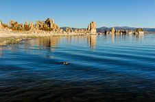 Free Mono Lake Tufa Formations At Sunrise Stock Photography - 36544372
