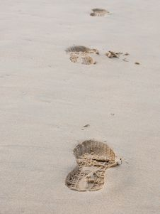 Free Foot Prints On A Sandy Beach Stock Photography - 36547722