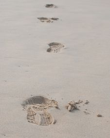Free Foot Prints On A Sandy Beach Stock Images - 36547734