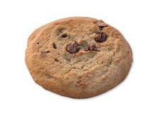 Free Chocolate Chip Cookie Stock Photos - 36552443