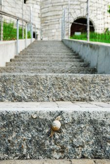 Stone Ladder With Crawling Snail. Stock Photography