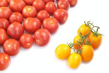 Yellow And Red Tomatoes Royalty Free Stock Photography