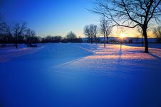 Free Sunset In The Winter Park Royalty Free Stock Image - 36563096