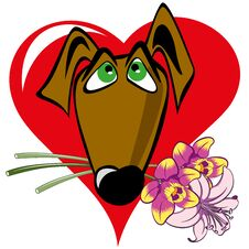 Free Dog With A Bouquet Royalty Free Stock Images - 36566479