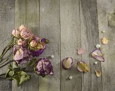 Free Vintage Border With Dried Roses Stock Photo - 36571250