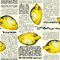 Free Paper Lemons Stock Images - 36580624