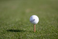 Free A Golf Ball On An Unusual Tee Royalty Free Stock Photos - 36588018
