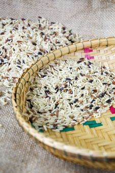 Free Variety Of Brown Rice Stock Image - 36581711