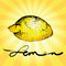 Free The Stylized Image Of Lemon Royalty Free Stock Photography - 36580717