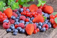 Free Wild Berries Royalty Free Stock Photo - 36590515