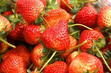 Free Strawberry Royalty Free Stock Image - 36598776