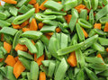 Free Fresh Pieces Of Vegetables Stock Photo - 3664970