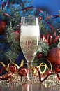 Free Glass With Champagne Royalty Free Stock Images - 3667959