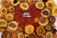 Free Christmas Bow And Flower Stock Image - 3660041