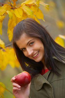 Free Autumn Woman Royalty Free Stock Image - 3662046