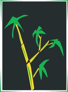 Free Bamboo Stock Image - 3663351