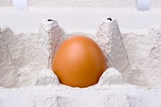 Free Egg Stock Photos - 3664793