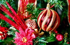 Christmas Colors Royalty Free Stock Images