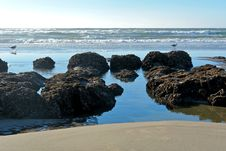 Free Beach And Rocks Stock Image - 3668821