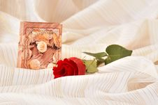 Free Red Rose Stock Photography - 3669892