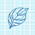 Free Drawing Of Leaves On Graph Paper Vector Royalty Free Stock Images - 36600069