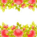 Free Fresh Flower Background Royalty Free Stock Photo - 36606945