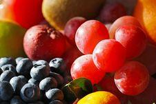 Seasonal Fruit Royalty Free Stock Photos