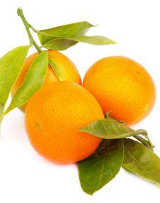 Free Tangerines Stock Image - 36603581