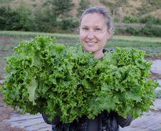 Free Girl With Green Salad Stock Photos - 36626743
