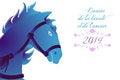 Free Blue Horse 2014 Royalty Free Stock Photo - 36636025
