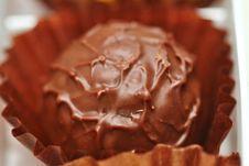 Free Chocolate Truffle Stock Photos - 36631843