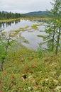 Free Wetland Lake Under A Gray Sky Stock Photography - 36643772