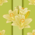 Free Vector Seamless Floral Background. Royalty Free Stock Photos - 36656398