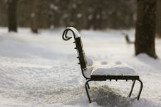 Free Park Bench Stock Images - 36650934