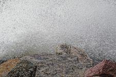 Free Storm Sea Stock Image - 36658241
