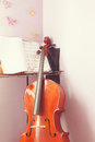 Free Learning Cello Stock Images - 36663084