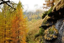 Free Alps Autumn Landscape 2 Royalty Free Stock Images - 36660519