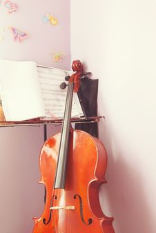 Learning Cello Stock Images