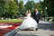 Free Happy Groom And Bride On Wedding Walk Royalty Free Stock Images - 36668429