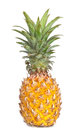 Free Ananas On White Background Royalty Free Stock Photo - 36678255