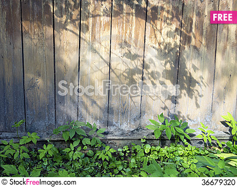 Free Wooden Wall Stock Photo - 36679320
