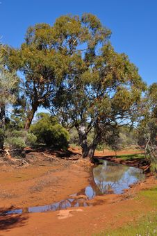 Free Water Hole Australian Outback Stock Photography - 36676442