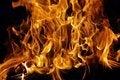 Free Burning Firewood XXXL Stock Photos - 36680583