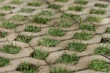 Free Brick Floors With Grass Stock Photos - 36685183