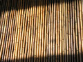 Free Bamboo Mat Royalty Free Stock Photos - 3670388