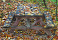 Free Picnic Table In Fall Royalty Free Stock Image - 3670626