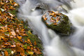Free Hidden Brook In Autumn Stock Image - 3673661
