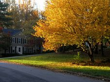 Free Fall Colors In Suburbia 1 Royalty Free Stock Photography - 3670627