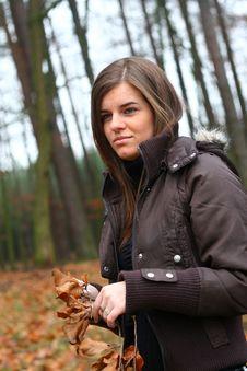 Free Autumn 3 Royalty Free Stock Photos - 3670718